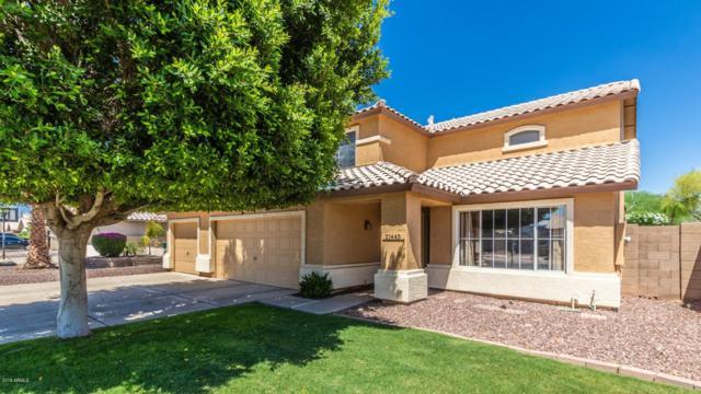 21445 N 107TH Drive, Sun City, AZ 85373 (MLS #5925828) :: CC & Co. Real Estate Team