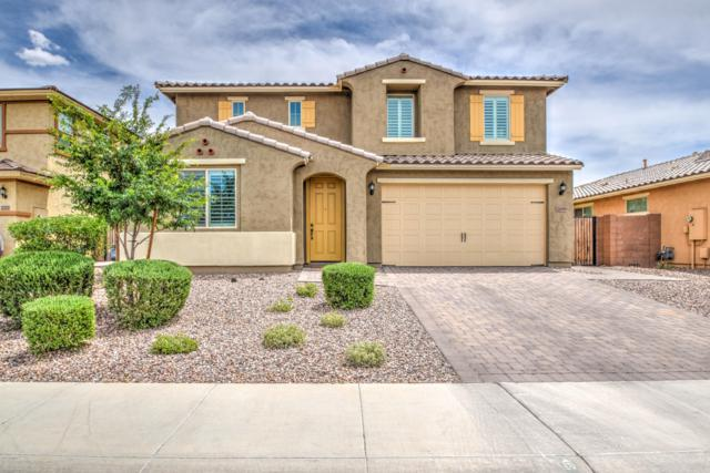 2699 E Daniel Drive, Gilbert, AZ 85298 (MLS #5925836) :: The Kenny Klaus Team
