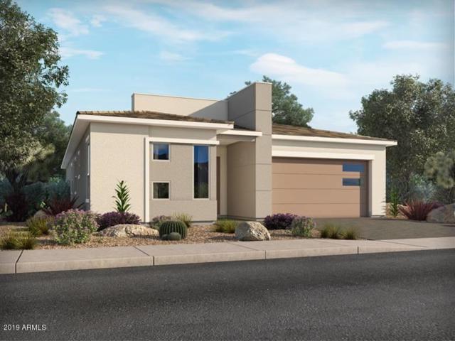1130 E Cherrywood Place, Chandler, AZ 85249 (MLS #5925856) :: The Daniel Montez Real Estate Group