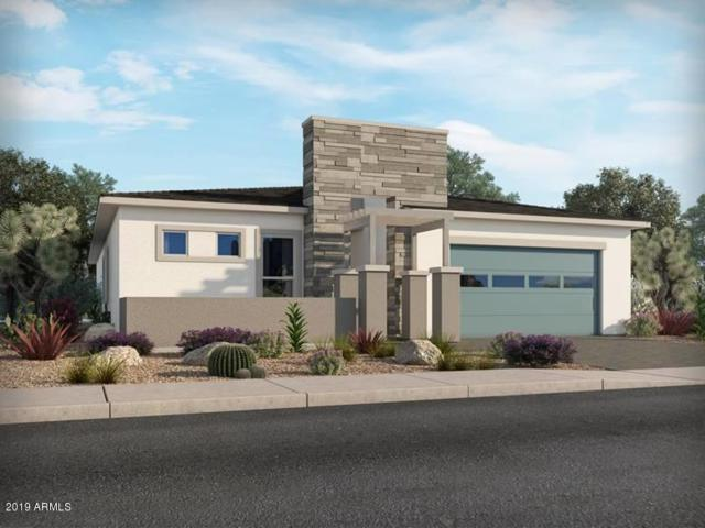 1080 E Cherrywood Place, Chandler, AZ 85249 (MLS #5925865) :: The Daniel Montez Real Estate Group