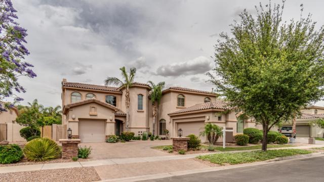 4710 E Buckboard Court, Gilbert, AZ 85297 (MLS #5925878) :: CC & Co. Real Estate Team