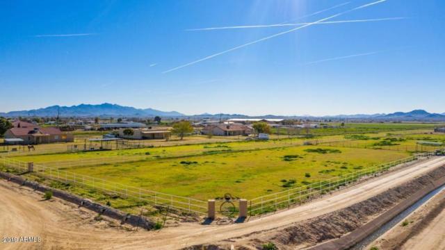 23036 W Sunland Avenue, Buckeye, AZ 85326 (MLS #5925881) :: The W Group