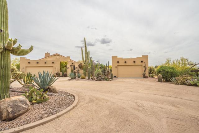 553 E Canyon Street, Apache Junction, AZ 85119 (MLS #5925896) :: CC & Co. Real Estate Team
