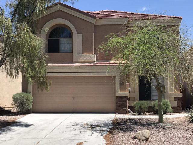 1439 S 231ST Lane, Buckeye, AZ 85326 (MLS #5925898) :: CC & Co. Real Estate Team