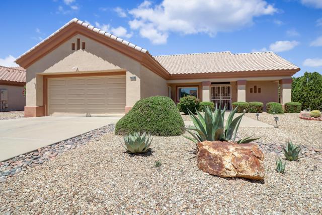 20438 N 133RD Drive, Sun City West, AZ 85375 (MLS #5925944) :: Riddle Realty