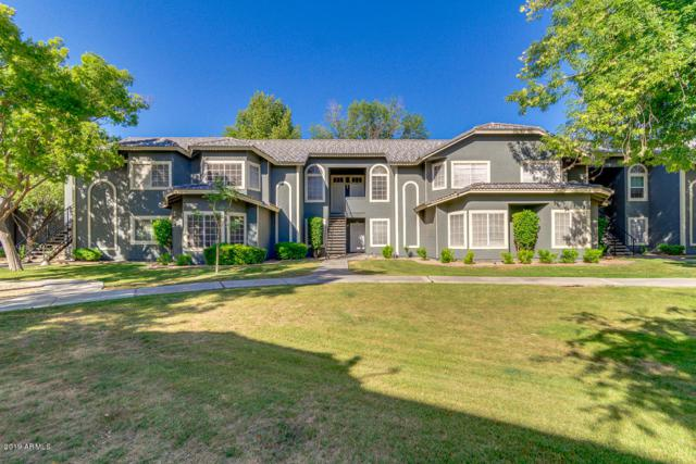 255 S Kyrene Road #222, Chandler, AZ 85226 (MLS #5925950) :: CC & Co. Real Estate Team