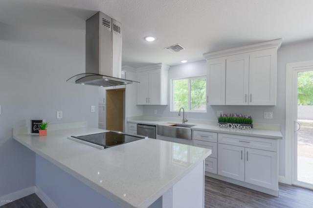 8623 E Edgewood Avenue, Mesa, AZ 85208 (MLS #5925951) :: CC & Co. Real Estate Team