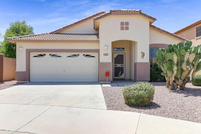 13866 N 159TH Drive, Surprise, AZ 85379 (MLS #5925958) :: Occasio Realty