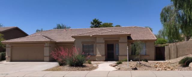 17620 W Polaris Drive, Goodyear, AZ 85338 (MLS #5925961) :: Brett Tanner Home Selling Team
