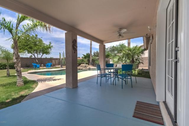 840 S Pineview Drive, Chandler, AZ 85226 (MLS #5925970) :: CC & Co. Real Estate Team