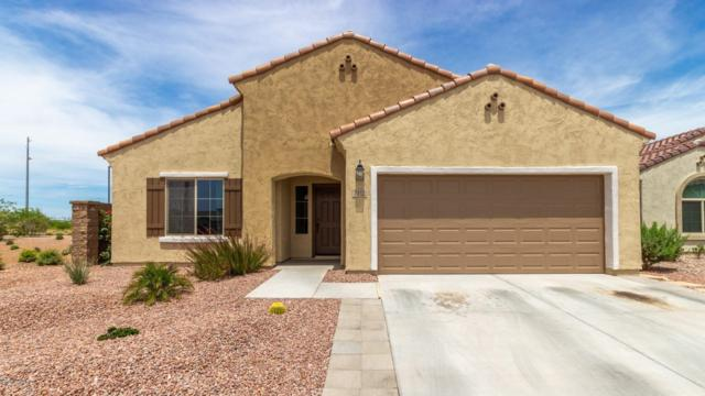 7112 W Sonoma Way, Florence, AZ 85132 (MLS #5925972) :: The Everest Team at My Home Group