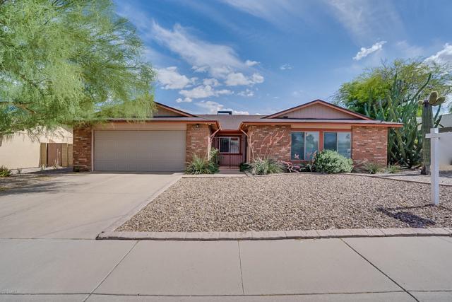 5007 E Shasta Street, Phoenix, AZ 85044 (MLS #5925978) :: Relevate | Phoenix