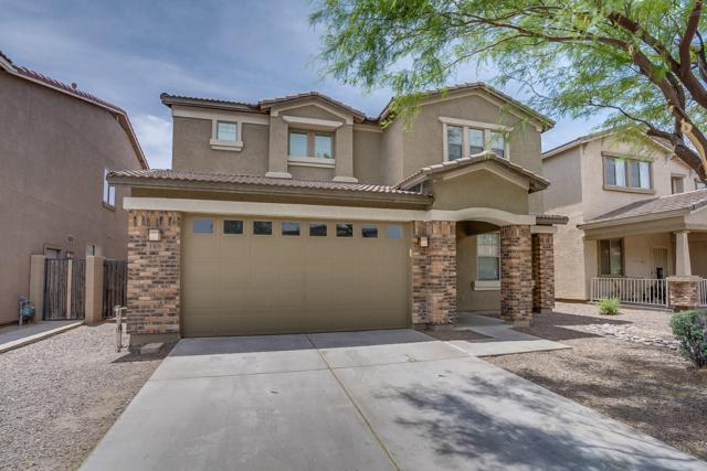 1101 E Nickleback Street, San Tan Valley, AZ 85143 (MLS #5925990) :: Arizona 1 Real Estate Team