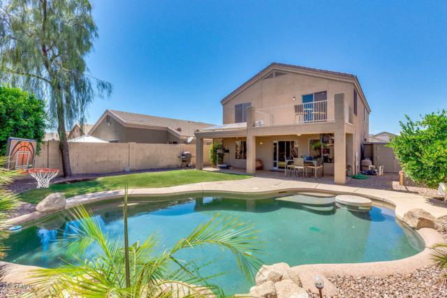 12825 W Crocus Drive, El Mirage, AZ 85335 (MLS #5926022) :: CC & Co. Real Estate Team