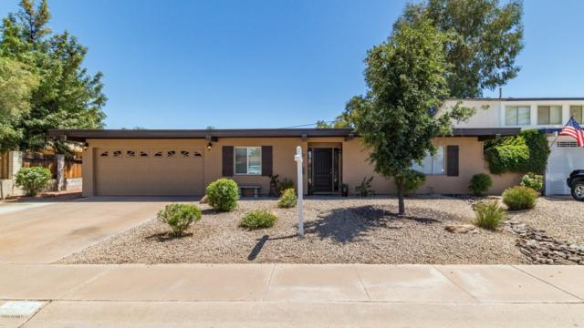 3757 E Sunnyside Drive, Phoenix, AZ 85028 (MLS #5926027) :: Arizona 1 Real Estate Team