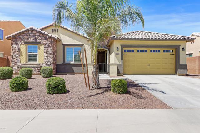 18642 W Miami Street, Goodyear, AZ 85338 (MLS #5926040) :: Brett Tanner Home Selling Team