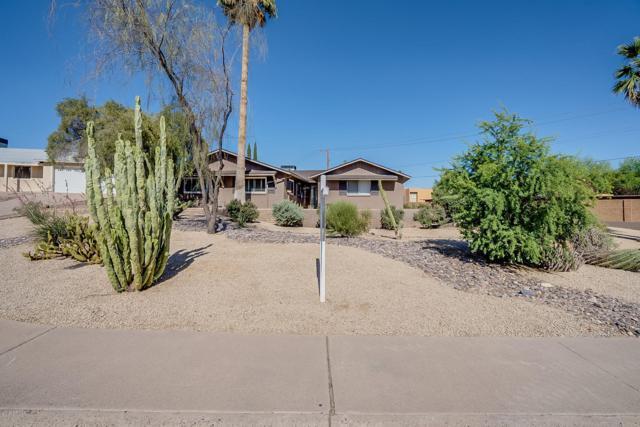 1423 N Gene Avenue, Tempe, AZ 85281 (MLS #5926083) :: Yost Realty Group at RE/MAX Casa Grande