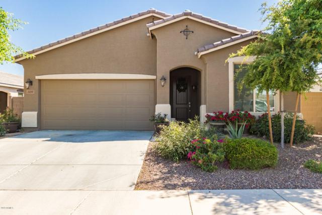 21257 W Berkeley Road, Buckeye, AZ 85396 (MLS #5926115) :: Team Wilson Real Estate