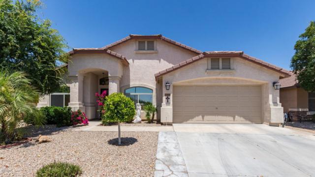 17898 W Alexandria Way, Surprise, AZ 85388 (MLS #5926121) :: CC & Co. Real Estate Team