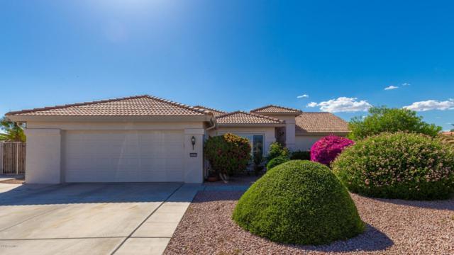 14955 W Whitton Avenue, Goodyear, AZ 85395 (MLS #5926124) :: Arizona 1 Real Estate Team