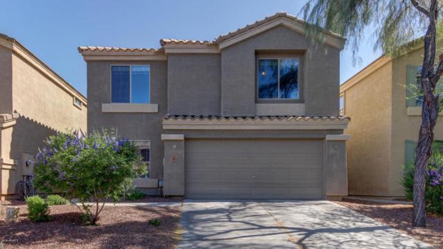 13015 W Lawrence Road, Glendale, AZ 85307 (MLS #5926148) :: CC & Co. Real Estate Team