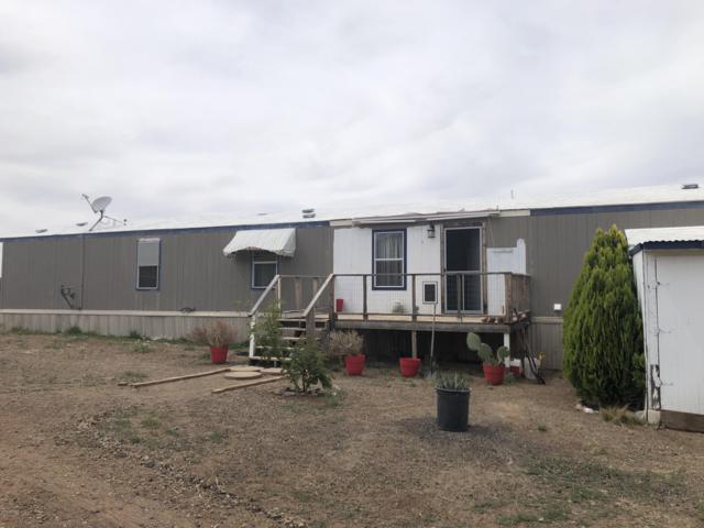 7378 E College Peak Road, Douglas, AZ 85607 (MLS #5926155) :: Brett Tanner Home Selling Team