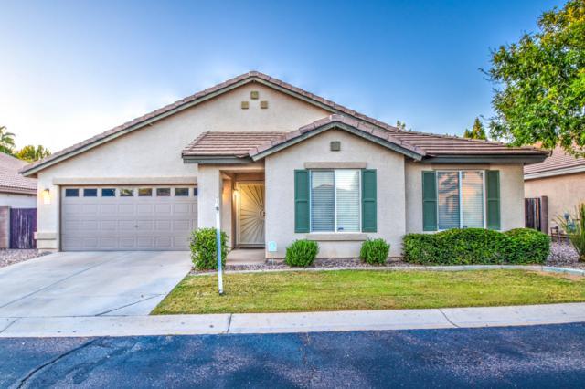 5236 E Ingram Street, Mesa, AZ 85205 (MLS #5926191) :: CC & Co. Real Estate Team