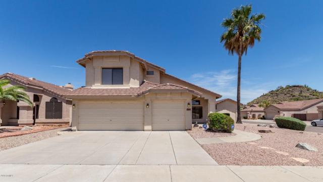 20041 N 21ST Place, Phoenix, AZ 85024 (MLS #5926250) :: Arizona 1 Real Estate Team