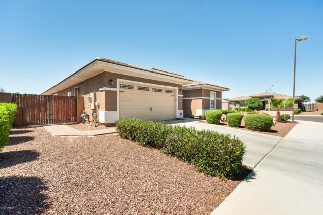 18651 W Miami Street, Goodyear, AZ 85338 (MLS #5926253) :: CC & Co. Real Estate Team