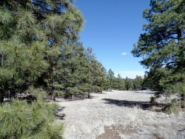 Lot 13 Red Cabin Ranch Estates, Vernon, AZ 85940 (MLS #5926262) :: Yost Realty Group at RE/MAX Casa Grande