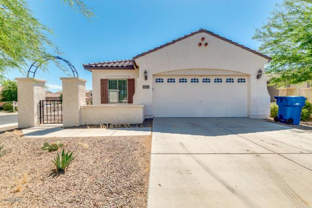 20579 N 261ST Court, Buckeye, AZ 85396 (MLS #5926269) :: The Results Group