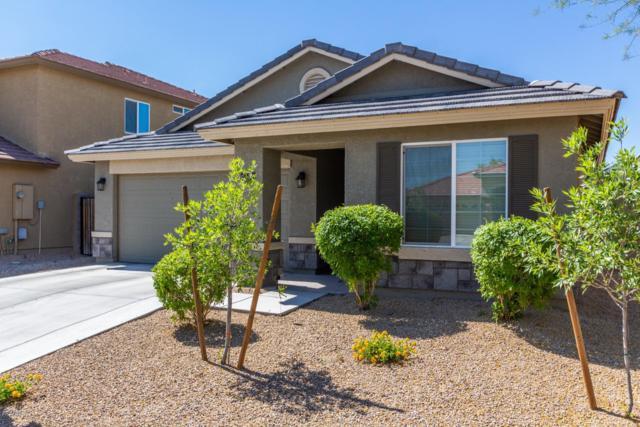 2743 W Wayland Drive, Phoenix, AZ 85041 (MLS #5926297) :: CC & Co. Real Estate Team