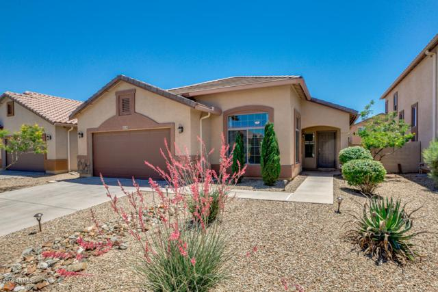 41245 W Laramie Road, Maricopa, AZ 85138 (MLS #5926305) :: Openshaw Real Estate Group in partnership with The Jesse Herfel Real Estate Group