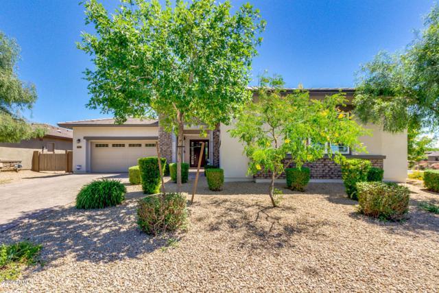 14589 W Meadlock Drive, Litchfield Park, AZ 85340 (MLS #5926313) :: CC & Co. Real Estate Team