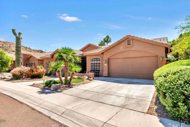 16637 S 25TH Street, Phoenix, AZ 85048 (MLS #5926324) :: Brett Tanner Home Selling Team
