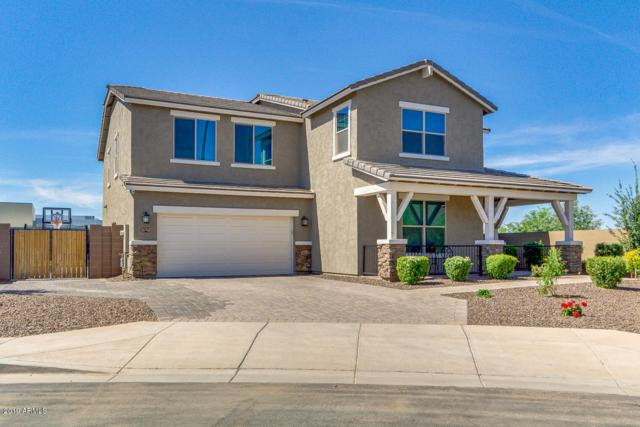 3871 E Mia Lane, Gilbert, AZ 85298 (MLS #5926349) :: Team Wilson Real Estate