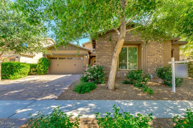 3119 E Maplewood Court, Gilbert, AZ 85297 (MLS #5926350) :: Revelation Real Estate