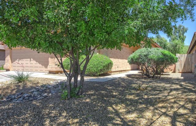 4630 E Adobe Drive, Phoenix, AZ 85050 (MLS #5926356) :: Conway Real Estate