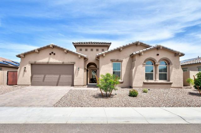 10100 W Spur Drive, Peoria, AZ 85383 (MLS #5926358) :: CC & Co. Real Estate Team