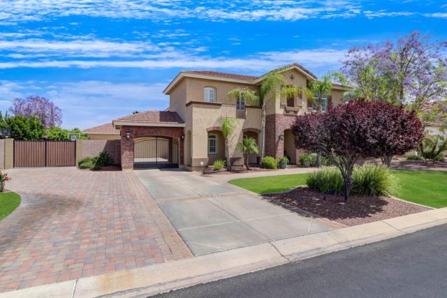 7168 W Avenida Del Sol, Peoria, AZ 85383 (MLS #5926377) :: CC & Co. Real Estate Team