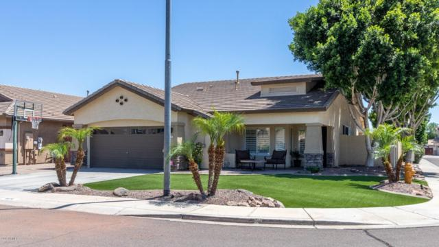 8171 W Beaubien Drive, Peoria, AZ 85382 (MLS #5926378) :: The Results Group