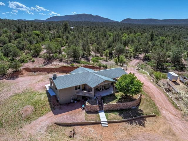 117 S Lion Springs Road, Payson, AZ 85541 (MLS #5926421) :: Riddle Realty Group - Keller Williams Arizona Realty