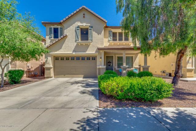 3558 E Terrace Avenue, Gilbert, AZ 85234 (MLS #5926436) :: The Kenny Klaus Team