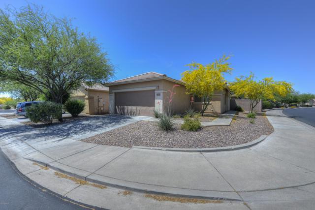 40130 N Thunder Hills Court, Phoenix, AZ 85086 (MLS #5926443) :: CC & Co. Real Estate Team