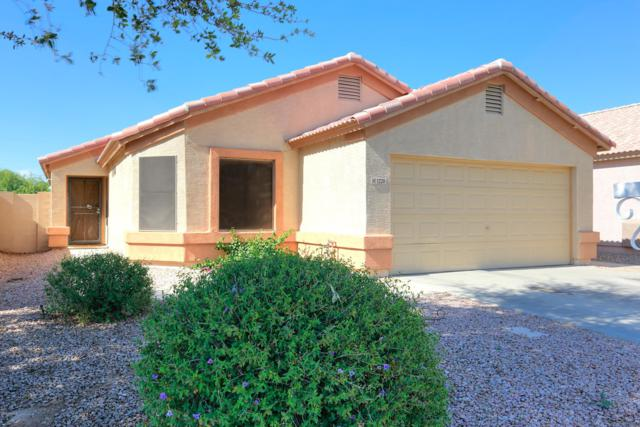 1228 E Elm Road, San Tan Valley, AZ 85140 (MLS #5926446) :: CC & Co. Real Estate Team