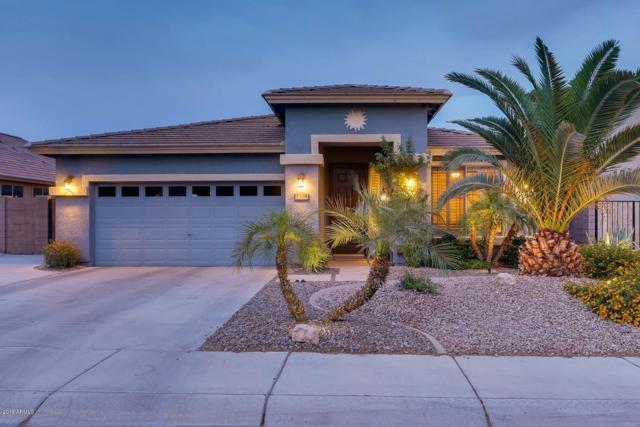 2709 N 115TH Lane, Avondale, AZ 85392 (MLS #5926448) :: Riddle Realty