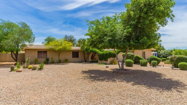 12239 N 62ND Street, Scottsdale, AZ 85254 (MLS #5926456) :: CC & Co. Real Estate Team