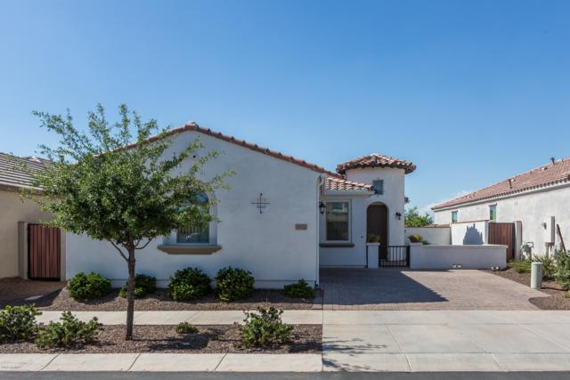 10132 E Tamery Avenue, Mesa, AZ 85212 (MLS #5926513) :: CC & Co. Real Estate Team