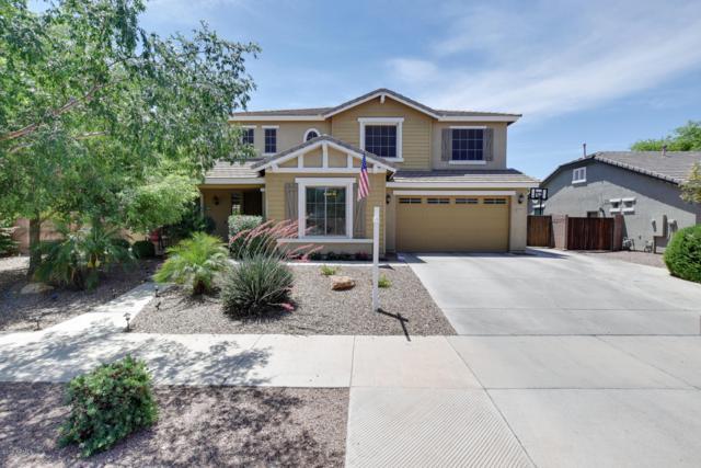 18887 E Canary Way, Queen Creek, AZ 85142 (MLS #5926514) :: CC & Co. Real Estate Team