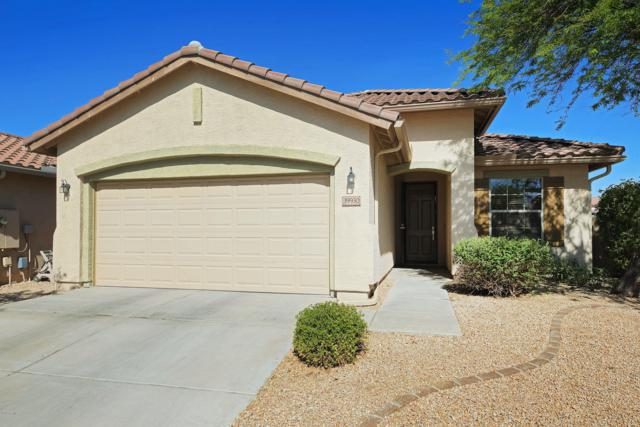 39930 N Thunder Hills Lane, Anthem, AZ 85086 (MLS #5926556) :: CC & Co. Real Estate Team
